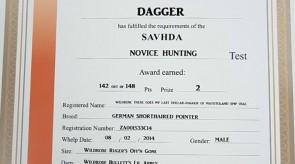 DAGGER_SAVHDA_Certificate.jpg